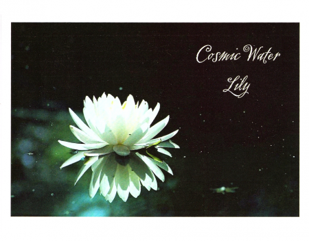 """Cosmic Water Lily"""